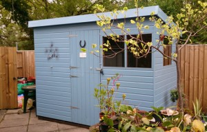 Garden Shed in Ascot, Berkshire